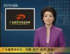 广州海珠区起诉离婚代理律师 广州著名婚外情离婚抚养权律师