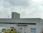 聊城高新区中华路4500平方米厂房出租