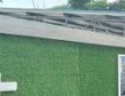 绿植背景墙制作 PVC字 画框 水晶字 PVC雕刻