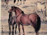 近代著名画家马晋作品手绘骏马四扇屏一套,收藏价值高