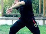 传统武术内功养生班 六十五周岁以上免费学习