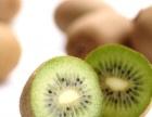 猕猴桃种植基地 批发销售猕猴桃 批发猕猴桃果苗
