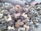 回收油田工具,钻头,