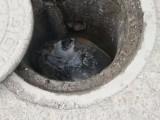 大理修下水道服务热线