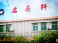 深圳最美海岸线-南澳名马轩度假山庄