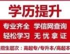 2019深圳成人学历报名 龙岗自考成人高考本科拿证