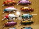 【口碑好】兴化大鑫渔具仿生假饵 种类多样