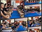 济南武運金龍散打搏击泰拳防身术专业培训机构