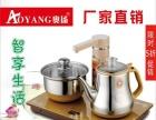 电茶壶,茶艺壶,花茶器,打牌必备的的喝茶神器