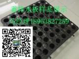 北京20高塑料排水板价格狗年好美丽