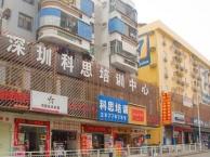 坂田市场/五和路口英语培训VIP商务英语一对一教学