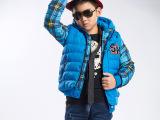 2015新款热卖可爱男童棉衣 欧式清新加厚儿童羽绒服 厂家批发