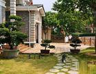 海逸豪庭二期:看了就喜欢的房子,东南向,花园700平,省海逸豪庭