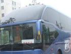 租车:别克GL8商务车丰田海狮考斯特各种大巴出租