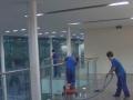 专业家庭开荒保洁、地毯清洗、日常清洗、展会保洁
