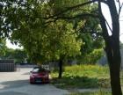 出售東湖塘工業園 土地 4畝