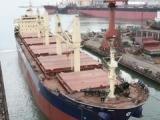 龙口、上海---马塔迪、特马 西非散货船