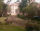 东莞松山湖 松湖苑 有多少栋花园小区是封闭式管理吗松湖苑