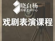 广州表演培训班:艺考影视表演-散文的艺术表现手法