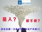 维盛外汇交易平台westarfx