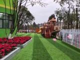 绿舒坦人造草坪的比较