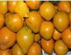 越南水果空运莲雾空运山竹空运菠萝蜜空运芒果空运