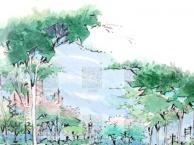 深圳宝安西乡 美术素描零基础培训机构