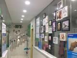 瑞派伍一宠物医院 长沙专业猫科中心医院