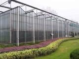 玻璃大棚設計 玻璃溫室造價