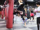 北京北武堂散打館-北京搏擊館-北京自由搏擊俱樂部