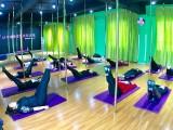 台州舞蹈培训 地区有名的钢管舞培训学校 包拿证