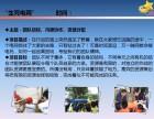 深圳周边打造团队凝聚力 提升团队活力的一天拓展训练方案