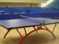 红双喜T2828乒乓球台 高档比赛乒乓球台