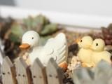 微世界 苔藓微景观多肉盆栽装饰 园艺鸭子三件套  树脂小摆件道具
