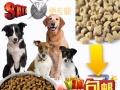 出售优质狗粮40斤装厂家直销货到付款包邮