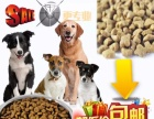出售优质狗粮40斤装厂家直销货到付款