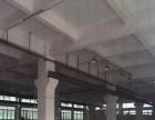 南区周边南区厂房新出一楼1700平方带牛角出租