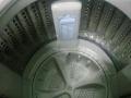 有台八成新的海尔全自动洗衣机6.5公斤容量
