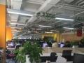 高端网站建设、APP开发、微信号开发、系统软件开发