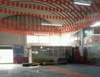泰拳减肥防身 小团体课程教学 济南大学东校区体育场