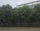 出租玉龙路附近厂房3000平独门独院