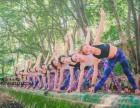 哪里学瑜伽教练 专业培训瑜伽老师 专业瑜伽进修课程