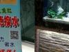 生态鱼缸清理