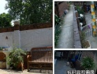 广州番禺南浦宠物家庭寄养近海珠洛溪芳村农村小院
