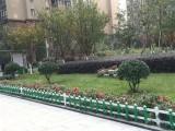 四川广元PVC塑钢围栏栅栏