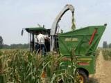 厂家销售大型自走式玉米秸秆青储机现货