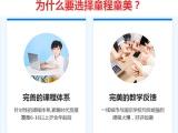 石家庄桥西区儿童编程学校-