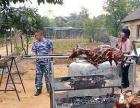 承接羌藏民族风情演出 篝火 烤羊 晚会等