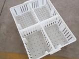 塑料鸡苗筐批发鸡苗鸭苗运输笼小鸡周转筐纯原料鸡苗运输筐