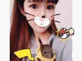 小松鼠 幼鼠 超级可爱带人亲